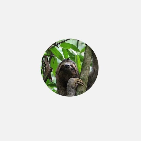 Sloth_20171101_by_JAMFoto Mini Button
