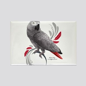 African Grey Parrot s Magnets