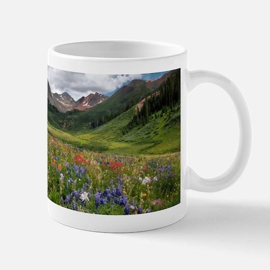 Alpine flowers in Rustler's Gulch - Stainless Stee