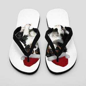 Untitled-1 Flip Flops