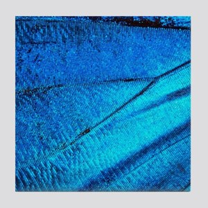Exotic Blue Butterfly Wing Macro Tile Coaster
