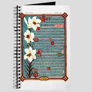 Matthew 6 Journal