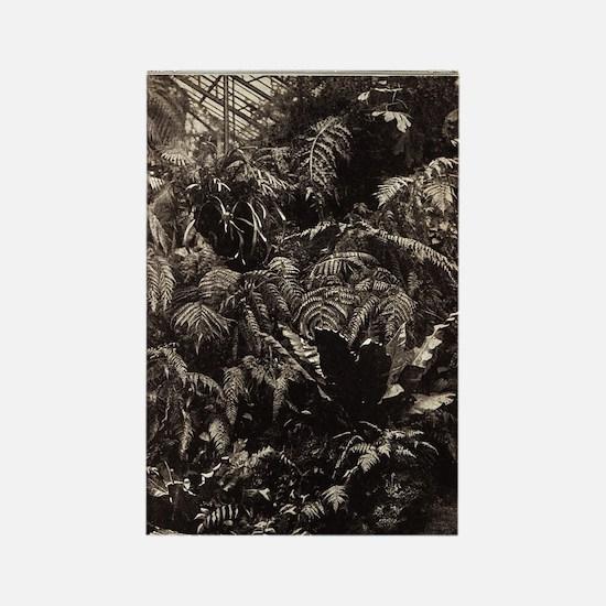Graceful Ferns Rectangle Magnet
