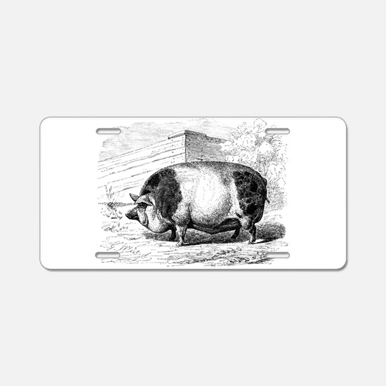 Cute Pigs Aluminum License Plate