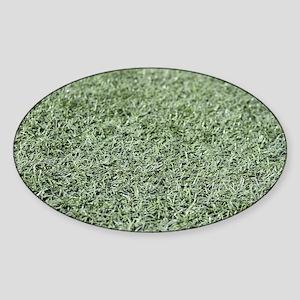 Grass AstroTurf Sticker