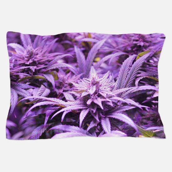 Cool Weed 420 Pillow Case
