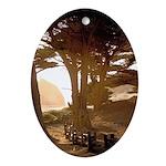 Cypress of Big Sur - Oval Ornament