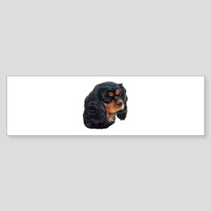 Black and Tan Cavalier King Charles Bumper Sticker