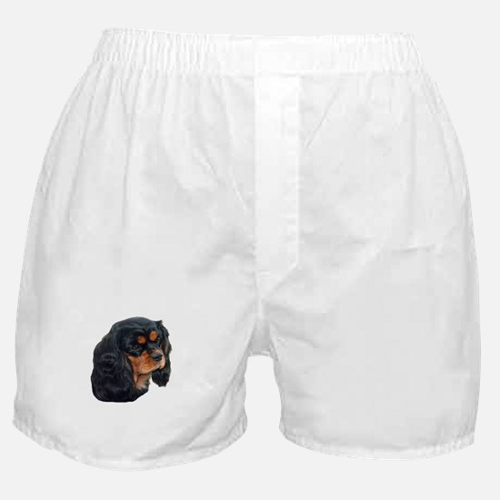 Black and Tan Cavalier King Charles S Boxer Shorts