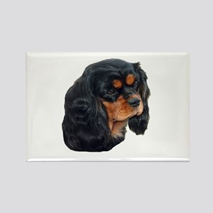 Black and Tan Cavalier King Charles Spanie Magnets