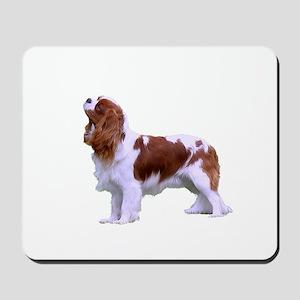 Blenheim Cavalier King Charles Spaniel Mousepad