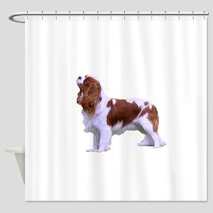 Blenheim Cavalier King Charles Span Shower Curtain
