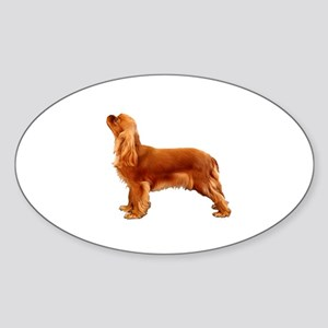 Ruby Cavalier King Charles Spaniel Sticker