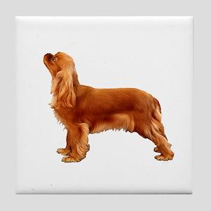 Ruby Cavalier King Charles Spaniel Tile Coaster