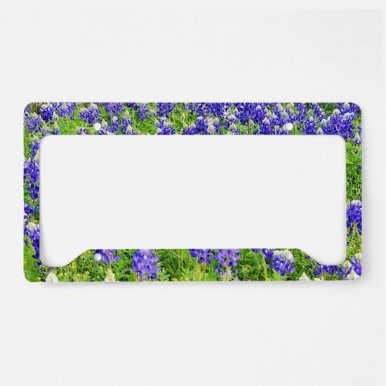 Cute Spring License Plate Holder