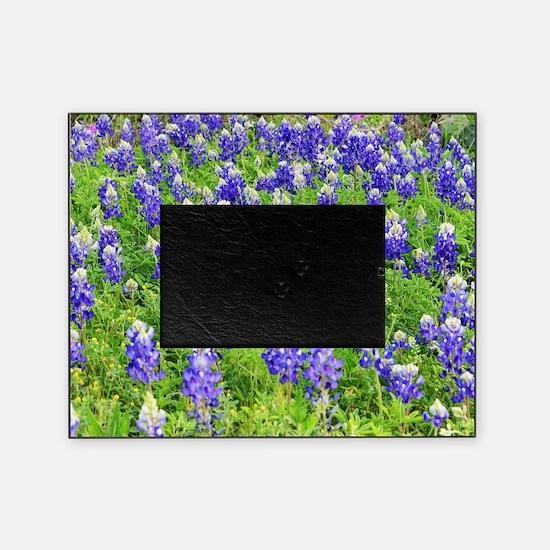 Unique Bluebonnet Picture Frame