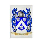 Swann Rectangle Magnet (100 pack)