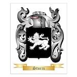 Sturm Small Poster