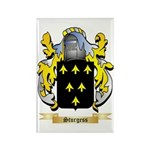 Sturgess Rectangle Magnet (100 pack)
