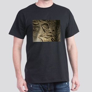 Funky Egyptian Hieroglyph at Nigh T-Shirt