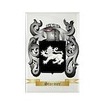 Stormer Rectangle Magnet (100 pack)
