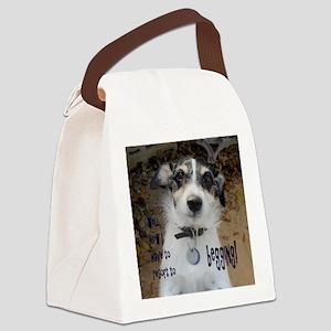 Begging Canvas Lunch Bag