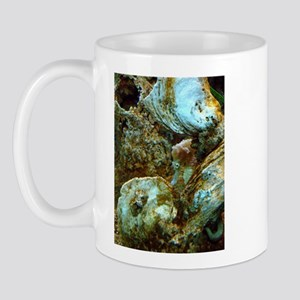 Shy Sea Horse Mug