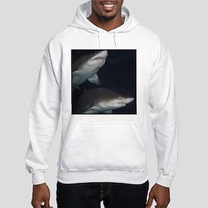 Sharks Hooded Sweatshirt