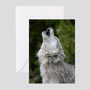 Morning Wolf Greeting Cards (Pk of 10)