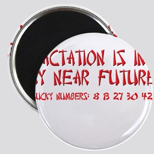 Lactation Fortune Magnet