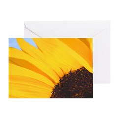 'Close To The Sun' All Occasion Greeting Card