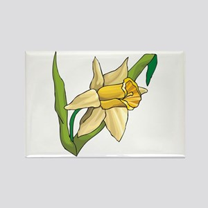 Daffodil Rectangle Magnet