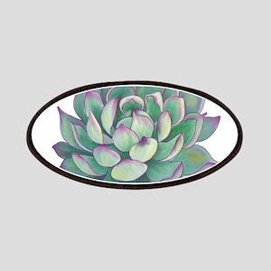 Succulent plant Patch