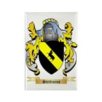 Stettinius Rectangle Magnet (100 pack)