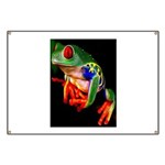Colorful Frog Banner