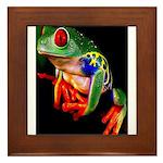 Colorful Frog Framed Tile