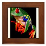 Colorful Frog Framed Tile