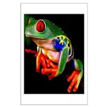 Colorful Frog Poster