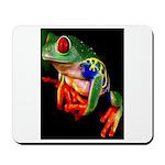 Colorful Frog Mousepad