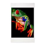 Colorful Frog Area Rug