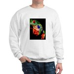Colorful Frog Sweater