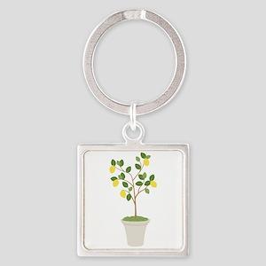 Lemon Tree Keychains