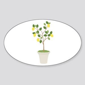 Lemon Tree Sticker