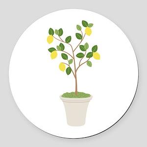 Lemon Tree Round Car Magnet