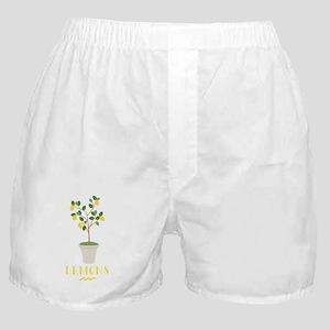 Lemons Boxer Shorts