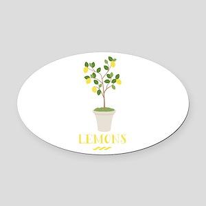 Lemons Oval Car Magnet