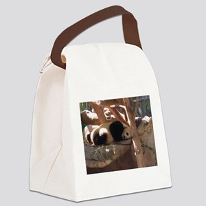 Sleeping Panda Canvas Lunch Bag