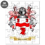 Stemson Puzzle