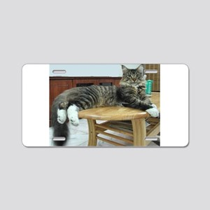 maine coon laying 2 Aluminum License Plate
