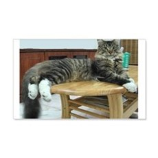 maine coon laying 2 Wall Decal